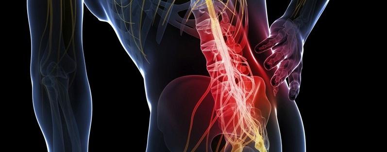 почему болит левый бок со стороны спины