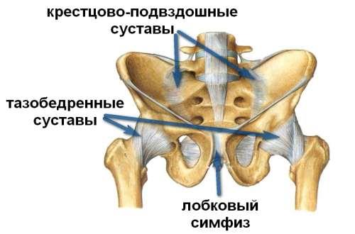 Ушиб копчика при падении симптомы лечение первичная помощь