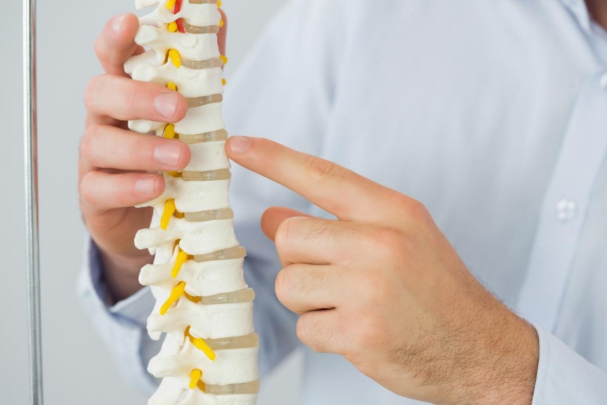 Как проверить спину позвоночник - Все про суставы