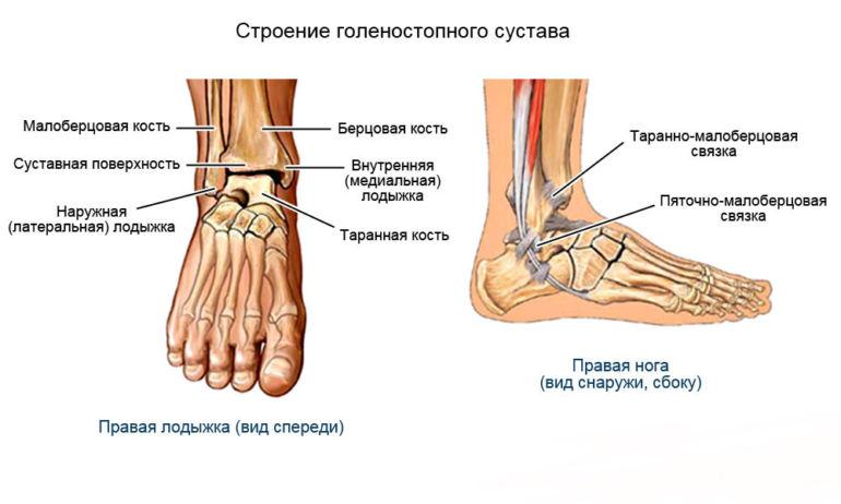 Изображение - Голеностоп сустав травма sviazki-1